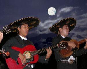 Moonlight mariachi
